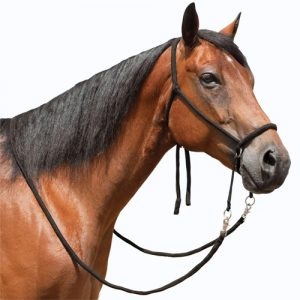 Saddle & Tack Category | FELDMANS FARM & HOME
